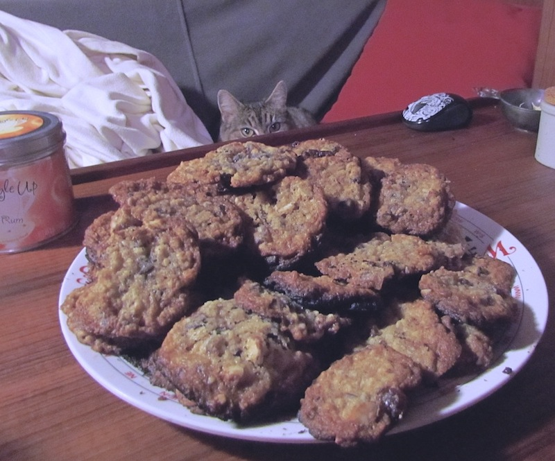 Image of plate of chocolate chip blizzard cookies