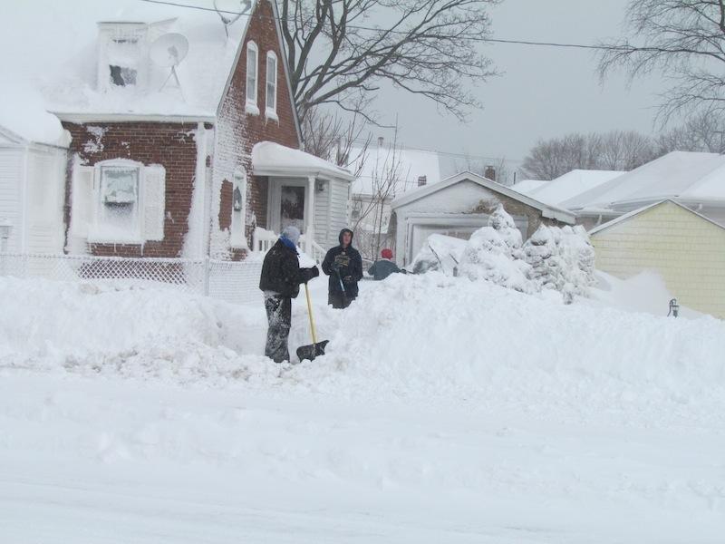 shovelers 1