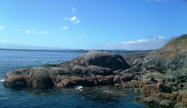 Rocky coast of Esquimalt
