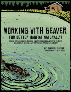 Working with Beaver cover