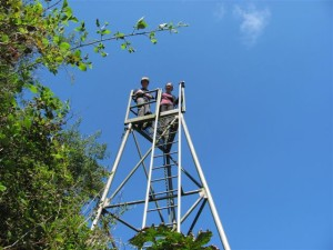 Viewers atop an observation tower