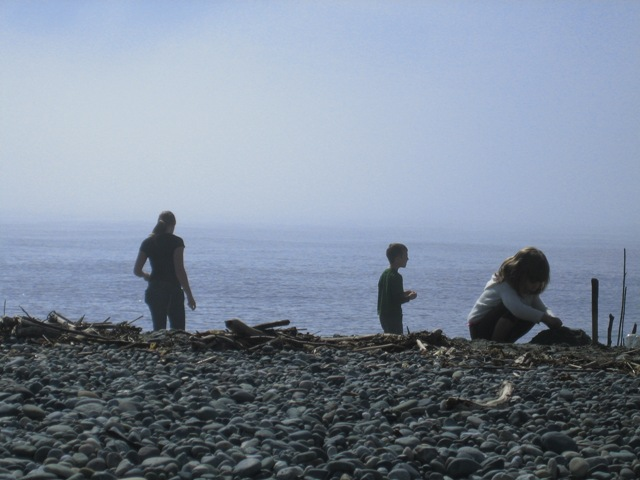 Image of family who know how to enjoy a beach, look for shells, skip stones, watch the waves