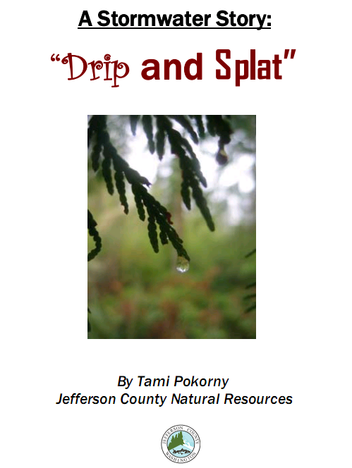 Image cover of essay, drip and splat a stormwater story