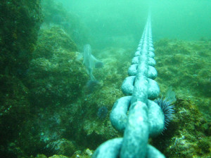 Image of anchor chain on sea bed, new boat mooring