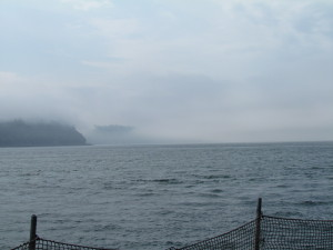 Headland lost in the fog, seen from Mukilteo ferry