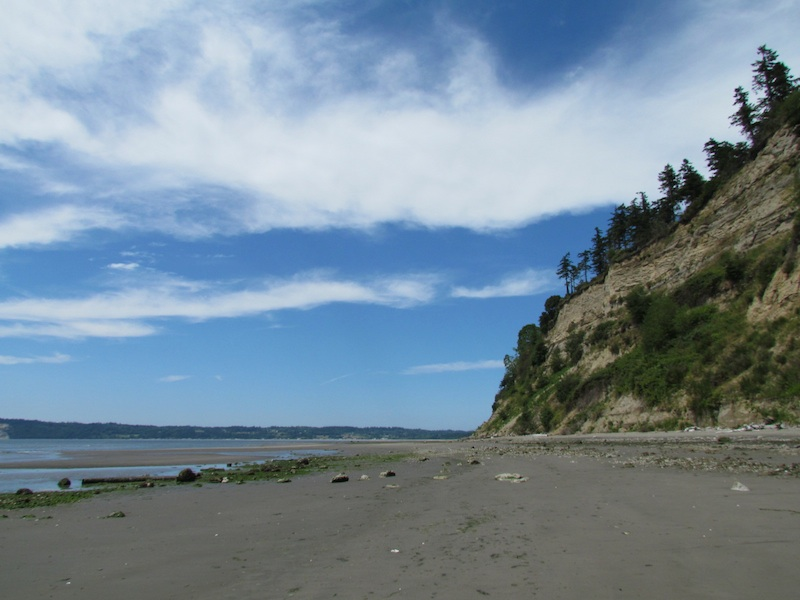the beach and bluff at Useless Bay, Whidbey Island