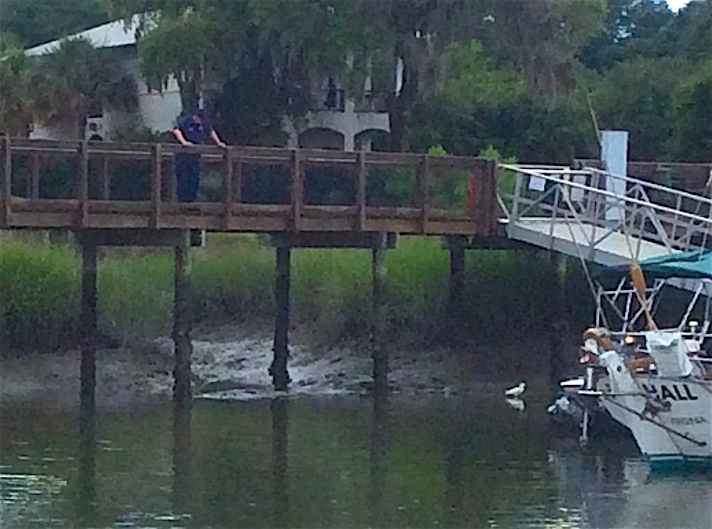 coast guard officer watches egret fishing after an oil spill