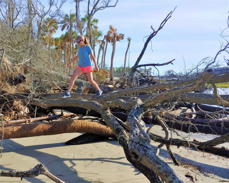 Nancy Bartlett log walking in maritime forest Hunting Island State Park