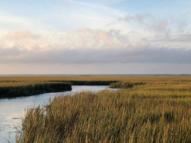 A view across marsh near Hunting Island State Park