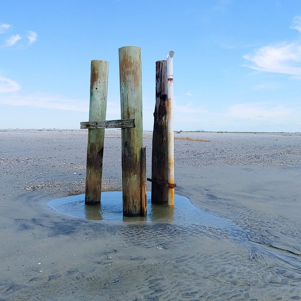 old pilings on beach
